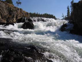 One of many waterfalls in Yellowstone