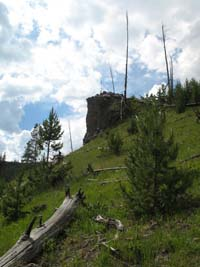 View of Hillside and open sky in Yellowstone