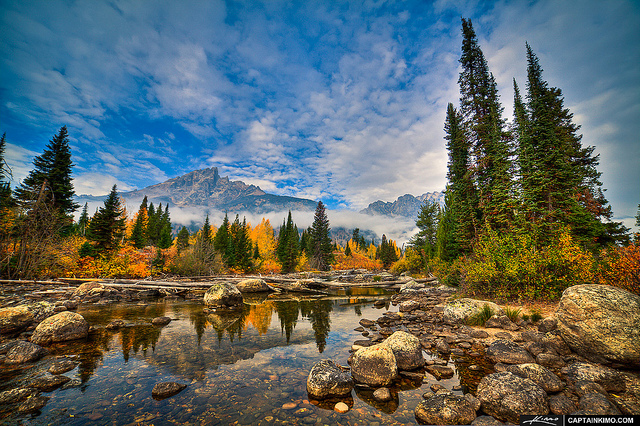 Fall Colors: Grand Teton National Park