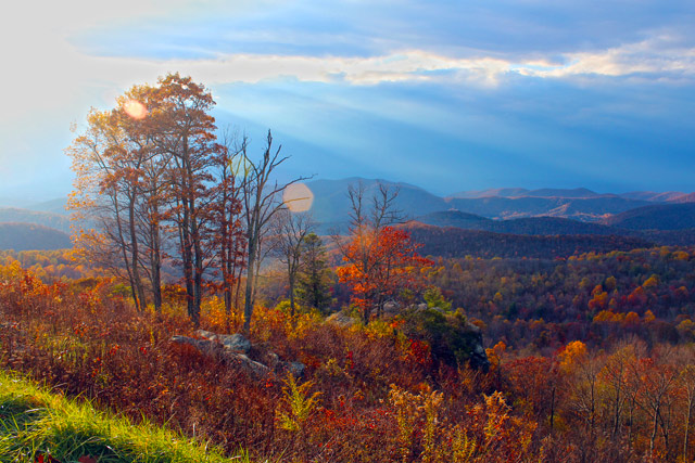 Fall Colors: Shenandoah National Park